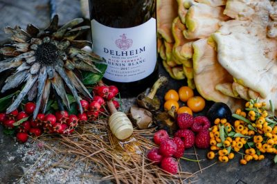 Chenin blanc takes flight again in Delheim's latest Wild Ferment