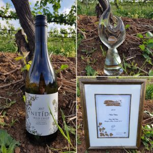 Nitida_Wild_Child Durbanville Wine Valley dominates at 2018 FNB Sauvignon Blanc Top 1