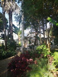 Van Loveren Gardens BoozyFoodie