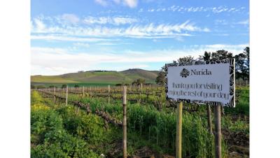 The Louwdown on Nitida's new winemaker #PR
